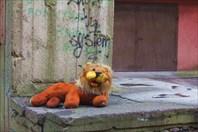 Невеселая жизнь веселого льва