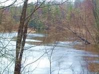 Река Вая