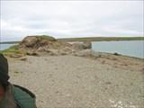 IMG_8898 Хозяйская чайка на камне.