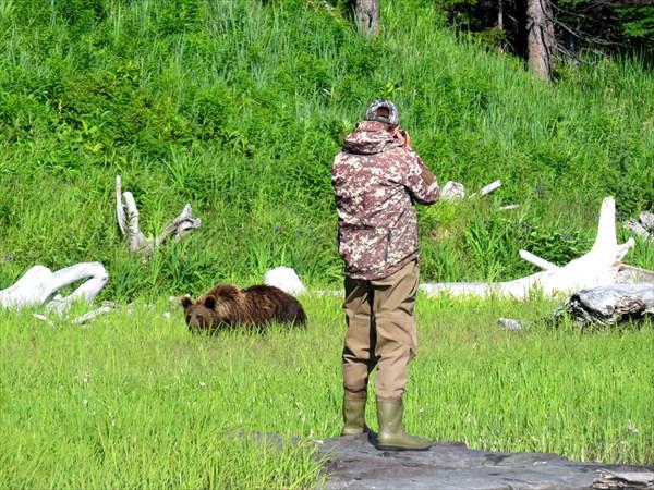Ольховский фотогарфирует медведя