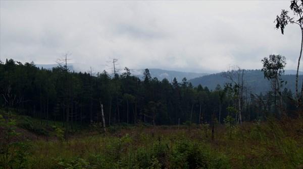 Вид с новой дороги по рю Олоно