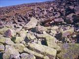 Близость к воде меняет цвет камней