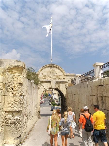 1199-Ворота