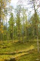 Район реки Метугулка