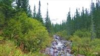 Долина притока реки Малый Тайгиш