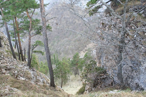 Вид в каньон