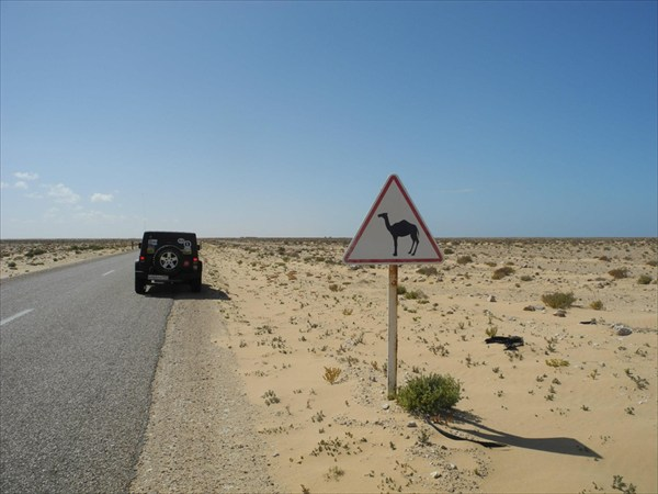 на фото:Sahara4