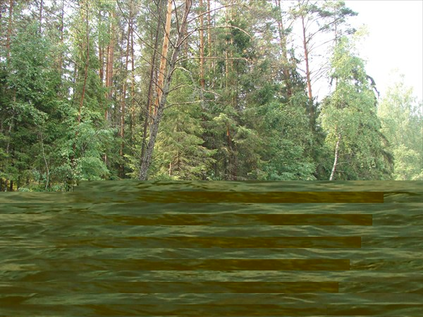 лес....
