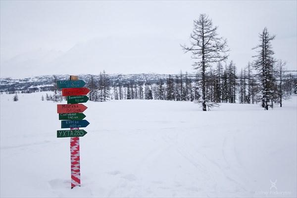 Столбик рядом с избой 40 окладов. Фото Андрея Подкорытова.