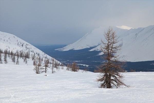 Вид с перевала на долину реки Вангыр. Фото Андрея Подкорытова.
