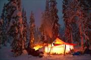 Ночёвка в лесу Аранецких болот. Фото Андрея Подкорытова.