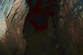 Пещера Тысячиголовая