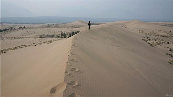 Пустыня с верхушки бархана