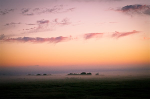 Самый прекрасный в моей жизни туман