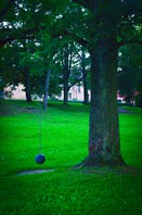 Странные шары на деревьях в Яунпилсе.