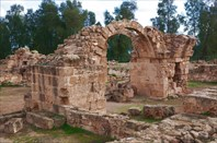 108.Катопафос