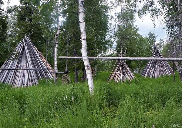 Заготовленные на зиму дрова