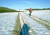 Снежники на водоразделе между долинами рек Макар-Рузь и Степрузь