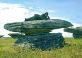 На камне