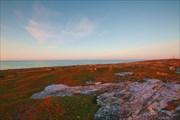 Берег Белого моря