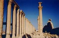 Развалины в Пальмире