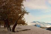 Долина Джазатора