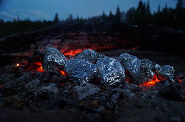 Печеная в углях свежепойманная рыба