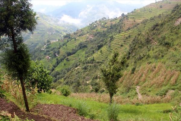 Nepal070_IMG_0070