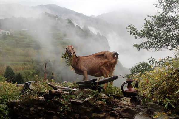 Nepal114_IMG_0114