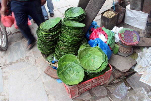 Nepal341_IMG_0341