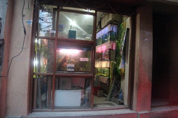 Nepal416_IMG_0416