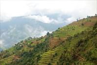 Nepal072_IMG_0072