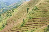 Nepal079_IMG_0079