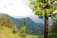 Nepal099_IMG_0099