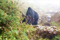 Nepal185_IMG_0185