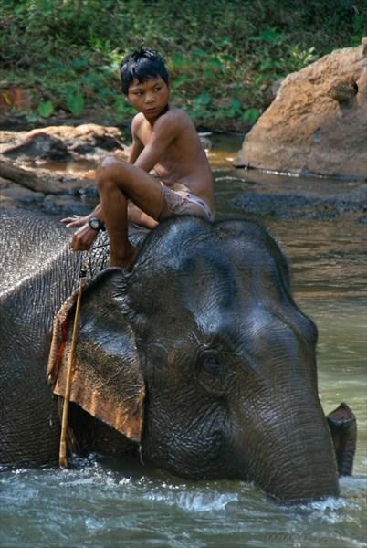 Фото к рассказу о Камбоджи