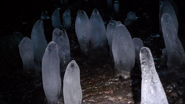 Нас встречает ледяной народ...