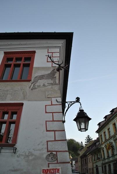 дом с оленями