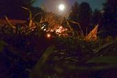 Нам сопутствовала удивительной красоты Луна