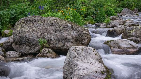 Цветущие берега ручья Двойной