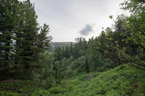 В долине р. Туралыг