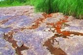 Выход железной руды на берегу Томи.