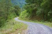 Дорога в нацпарке
