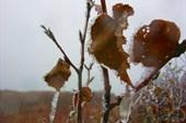 Осенние пейзажи Камчатки