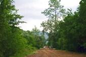 Начало пути от села Фанагорийское.