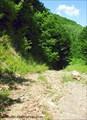Спуск горной дороги