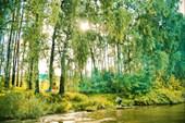 Клязминское водохранилище