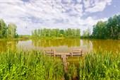 Озеро у обочины