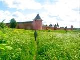Спасо-Ефимиевский монастырь