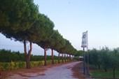 В 45 км от Рима